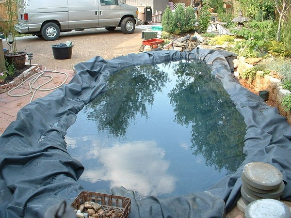 Water gardening is a relatively easy activity for Filling in a pond