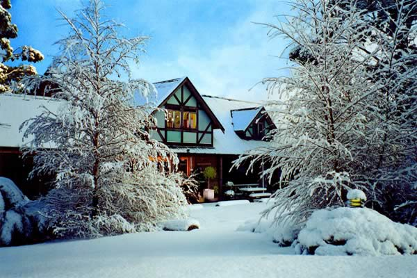 luxury chalet business